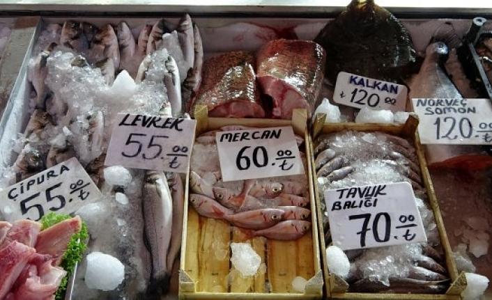 Sezon açıldı, balıklar yüksek fiyatlardan alıcı buluyor!